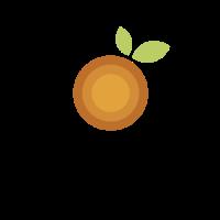 Minimalist Orange Target Logo Design